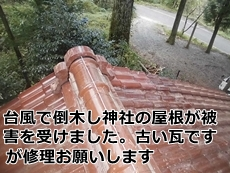 hakusanfutamate8.jpg