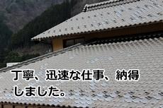 hara201403021.jpg