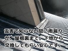 mitinoeki201501082.JPG