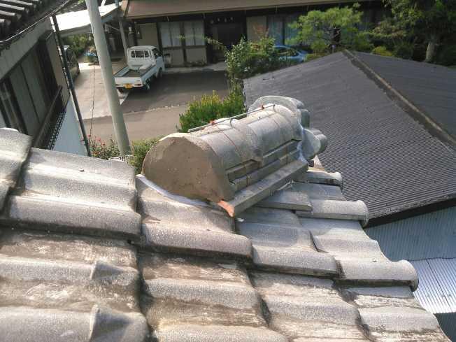nodainari10267001.jpg