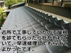 nodainari102670031.jpg