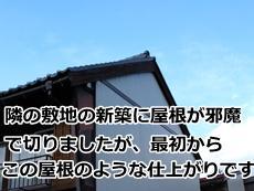 simizu20140203.jpg