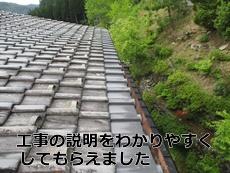 tanakakomami9.jpg