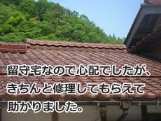 yamagisi2014510.jpg